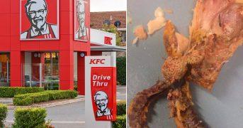"""Девушка нашла в порции ножек из KFC """"мозги"""""""