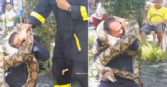 Питон чуть не убил пожарного на глазах у школьников